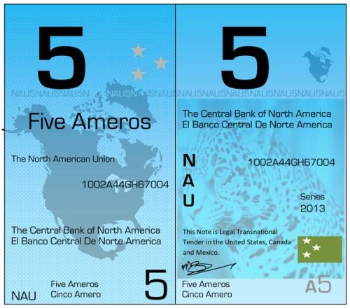 Amero_2-6